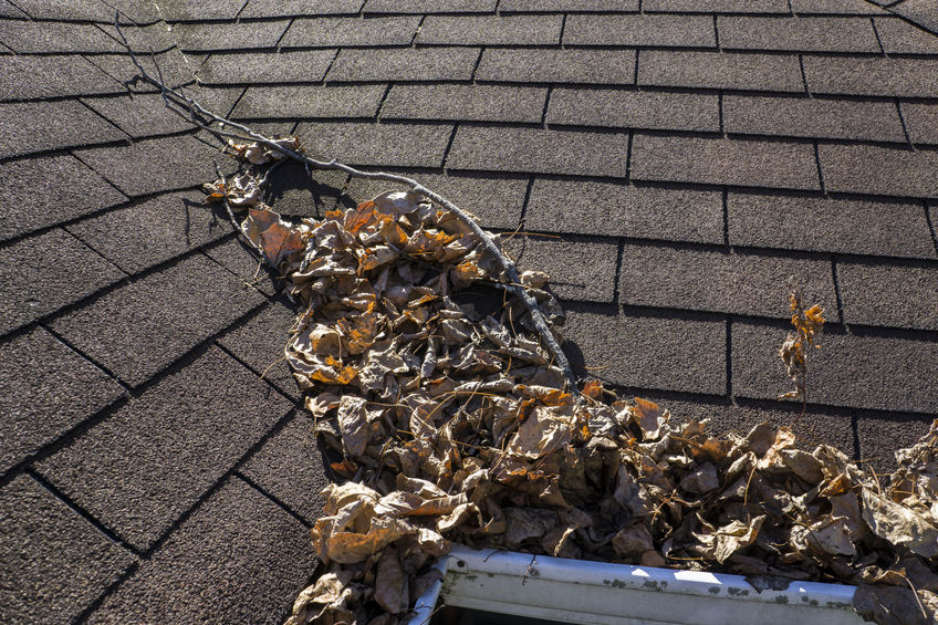 Roof Repair, Should Roof Repair Be on Your List of Fall Home Maintenance Tasks?